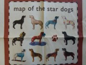 Dog stars specialty items