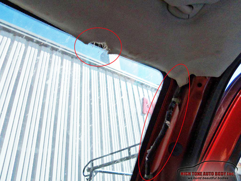 Interior roof damaged by bear